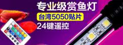 专业级赏鱼灯台湾5050贴片24键遥控