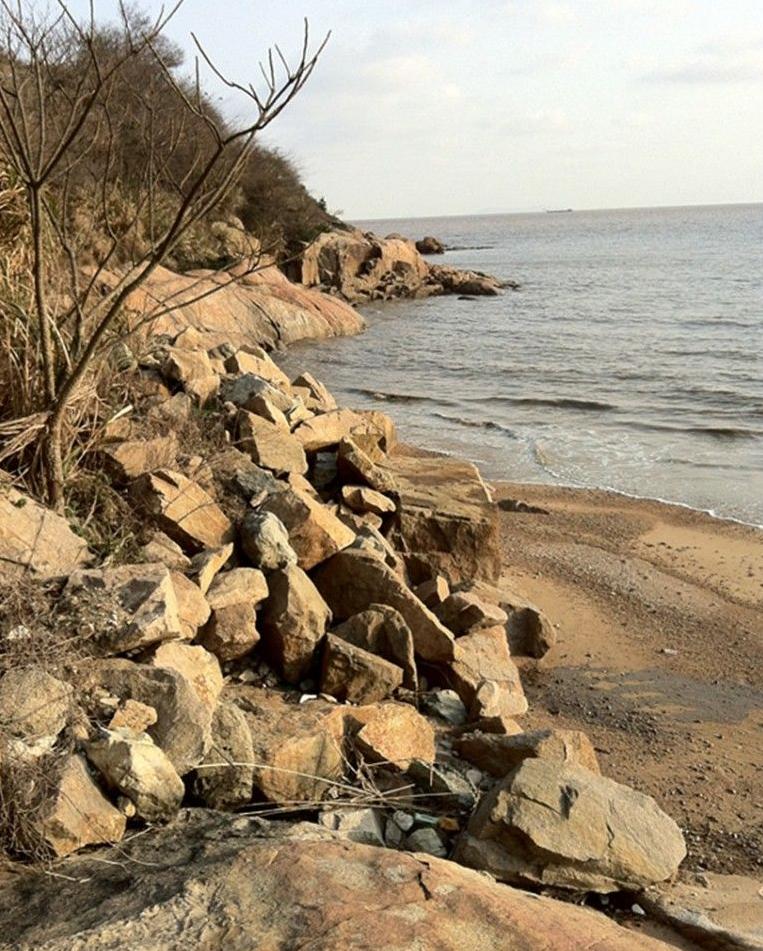 在海边采集石头