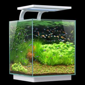 森森迷你小鱼缸 小鱼缸 森森新款鱼缸HKL-250 办公室 客厅鱼缸