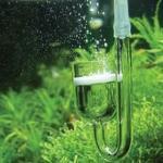 水草的生长和二氧化碳的关系 需不需要补充二氧化碳呢?