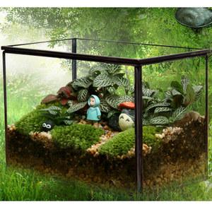 微景观苔藓龙猫生态瓶 办公室创意DIY玻璃盆栽负离子植物 新奇礼品