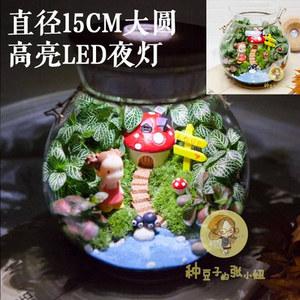 种豆子的张小妞宫崎骏小梅房子盆栽微景观生态大瓶加带LED灯 包邮