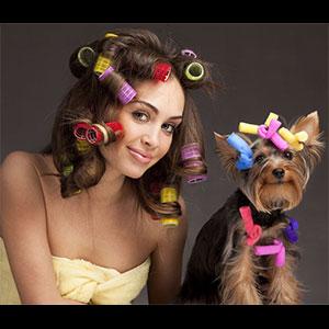 宠物与美女一起做发型