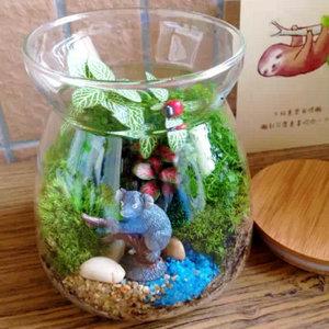 【热带雨林】苔藓微景观生态瓶 创意盆栽 个性绿植 森林园艺礼物
