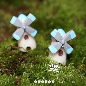多肉植物 苔藓微景观造景素材 可爱卡通小风车 DIY生态瓶装饰摆件