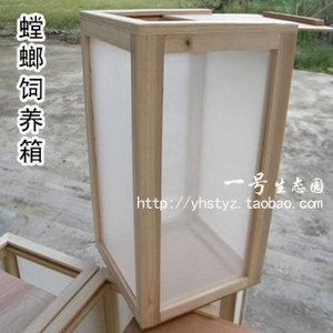 昆虫饲养盒,可以养螳螂活体、蝴蝶化蛹,昆虫宠物箱子