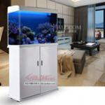 西龙鱼缸怎么样——加配地柜的西龙XL-620A、820A鱼缸评测 60厘米、80厘米鱼缸首选