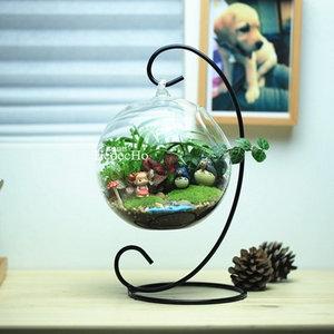 3.14白色情人节 苔藓微景观 生态瓶 易格自然 创意绿植 龙猫DIY微
