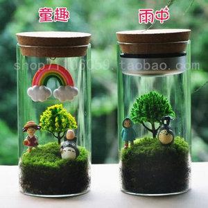 圆柱型的微景观 苔藓小品 苔藓瓶 生态瓶 苔藓微景观 龙猫 微景观diy