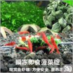 水晶虾吃什么最好?台湾瞬冻即食熟菠菜虾粮-观赏虾胡子大帆都爱吃 冻干菠菜解冻过程就像泡碗方便面