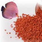 如何挑选鱼饲料?鱼饲料哪个牌子好? 鱼饲料价格比较,什么价位的鱼粮合适?