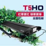 鱼友使用T5HO奥德赛水草灯专业评价 奥德赛T5灯与普通LED灯的对比