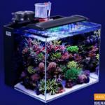 如何选购高质量的成品海水鱼缸? 首选超白玻璃海水缸
