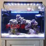 海水鱼缸中的造景材料之生态岩石(活石)的挑选和摆放方法 海水鱼水族箱造景