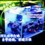 海水鱼缸照明灯该如何选择?有可以养好珊瑚的led灯吗? 海水缸选LED灯攻略