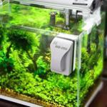 教你个简单的招,清洗鱼缸变得干净又省心 鱼缸的水垢怎么清洗?