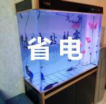 如何给鱼缸在寒冷冬天做保温少费电呢? 鱼缸保温方法总结