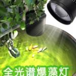 乐迪全光谱LED爆藻灯怎么样?来看看爆藻灯用户的使用效果