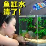 2020中原宠物展开展在即,10月21-23日郑州国际会展中心不见不散!