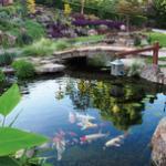 锦鲤鱼池建造材料和施工方法要点介绍 鱼池过滤器