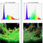 教你如何看懂光谱图,自己分辨全光谱水草灯的优劣水草与光谱的关系